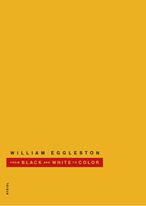couverture du livre WILLIAM EGGLESTON FROM BLACK AND WHITE TO COLOR /ANGLAIS